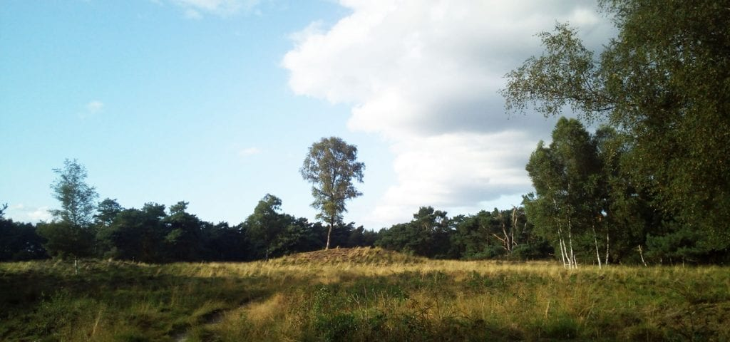 Koningsheuvel